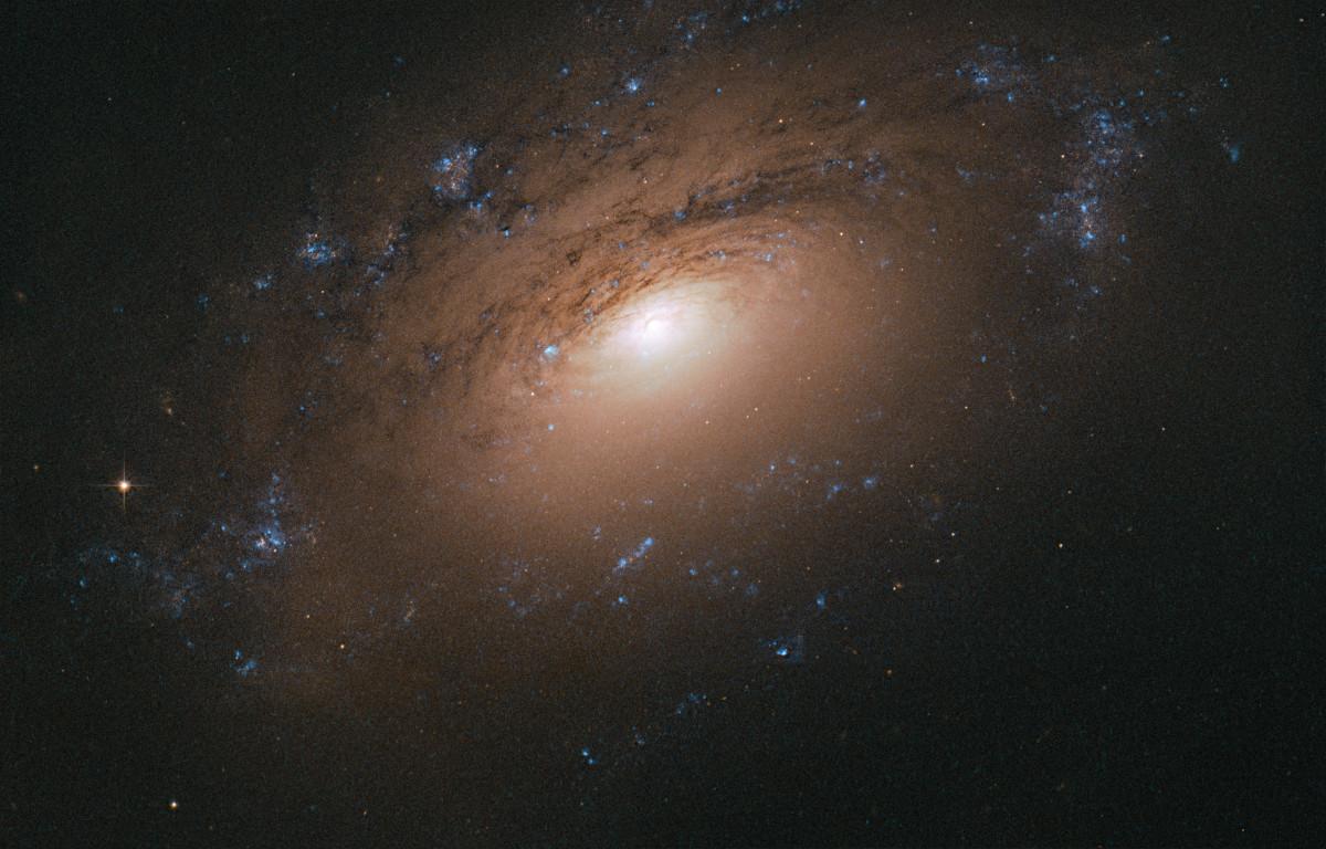 ハッブル宇宙望遠鏡がとらえた渦巻銀河NGC 3169 | アストロピクス