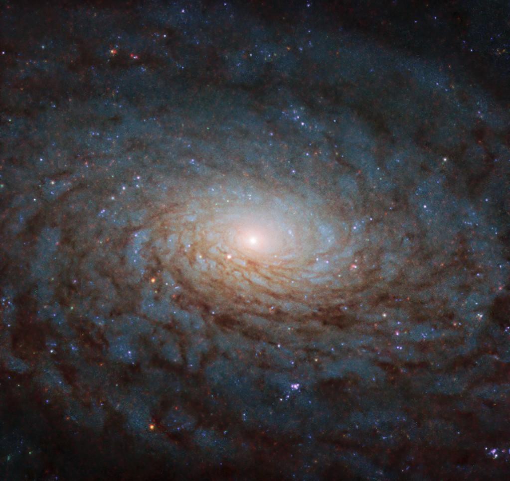 異次元への入口 渦巻銀河ngc 3717 ハッブル宇宙望遠鏡の今週の1枚 アストロピクス