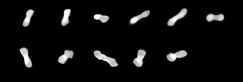 2017年から19年にかけて、異なる時期に撮影されたクレオパトラの画像。さまざまな角度で映っています。